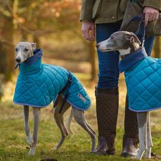 Sussex Washable Hound Coat - Style Going Soon! - Redhound For Dogs Country Wear, Lurcher, Dog Jacket, Dog Id, Dog Items, Dog Wear, Whippets, Adorable Dogs, Italian Greyhound