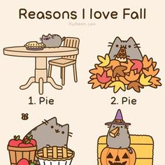 Well, I personally don't love fall, but this kitty does!