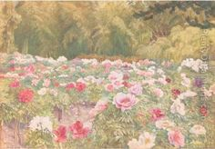 Peony Garden, Kyoto, Japan Oil Painting - Henry Roderick Newman
