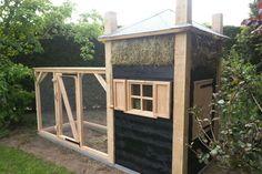 ref-hooiberg-ren-twello-3 Building A Chicken Coop, Green Life, Coops, Dog Cat, Shed, Outdoor Structures, Pets, Rabbits, Ducks