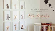 The Animal Print Shop Little Darlings. Little Darlings nursery art series from The Animal Print Shop by Sharon Montrose. www.theanimalprintshop.com