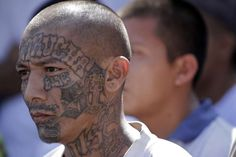 Barack Obama Knowingly Admitted MS-13 Gang Members into States