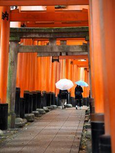 Fushimi Inari Taisha temple in Kyoto, Japan   Photo: Jenni Rotonen / Pupulandia