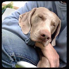 Sleepin..
