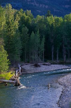 Fly Fishing in the Methow River