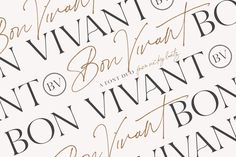 Bon Vivant Collection  Beautiful fonts perfect for branding, graphic design, social media design, web design, typography, and more! #ad
