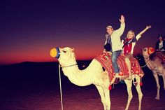 Camel Ride - Created with BeFunky Photo Editor Photo Editor, Camel, My Photos, Explore, Animals, Animales, Animaux, Camels, Animal