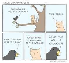 Poorly Drawn Lines – Naive Dramatic Bird