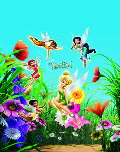disney fairies | Disney Fairies Tinkerbell