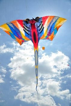 Awesome beach kite in flight =) Kite Surf, Go Fly A Kite, Kite Flying, Stunt Kite, Kite Designs, Nerf Party, Relaxing Day, Hot Air Balloon, Op Art