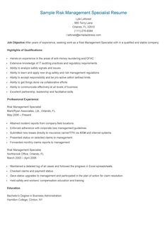 resume html forward sample risk management specialist resume