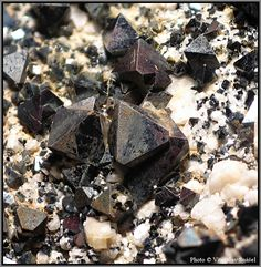 Toto je magnetit. Velikost vzorku: 12 x 12 mm.