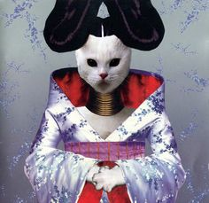 Classic album covers reimagined with kittens. Bjork