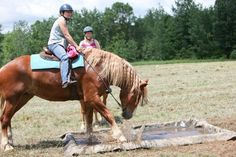 Water Crossing!  Horse Obstacle Course Training