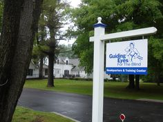Guiding Eyes for the blind yorktown heights, New York.  Visit puppies and see the amazing crew training dogs for humans.
