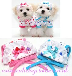 Sweet Heart Dog Hat | Adorable sweet heart hats. With colour… | Flickr