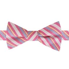 Men's Bow Tie Tuesday Patterned Pre-Tied Bow Tie, Pink