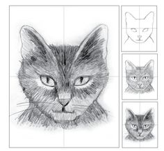 Art Projects for Kids: Cat Head Pencil Shading