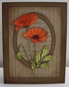 Framed Poppies - F4A77