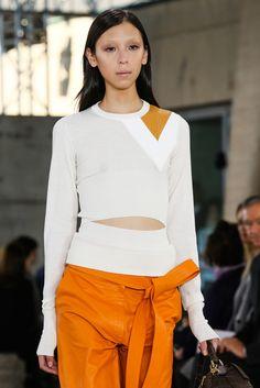Loewe Spring 2015 Ready-to-Wear - Details - Gallery - Look 95 - Style.com