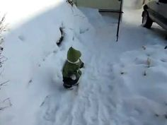 Monkey in a Snow Suit Plays in the Snow
