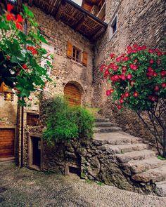 "5,348 curtidas, 190 comentários - DORIAN PELLUMBI (@dorpell) no Instagram: ""Corners of Italy  Canale di Tenno (TN) • • • #tenno #trentino #bdteam #travel #visittrentino #mood…"""