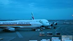 - Check more at http://www.miles-around.de/trip-reports/economy-class/singapore-airlines-boeing-747-400-economy-class-new-york-nach-frankfurt/,  #Airport #avgeek #Aviation #Boeing #FRA #JFK #NewYork #NewYorkCity #Planespotting #SingaporeAirlines #Trip-Report #USA