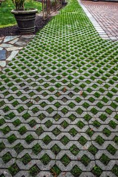 TurfStone Pavers aka grass pavers such a lovely look Permeable Driveway, Driveway Landscaping, Modern Landscaping, Diy Driveway, Modern Driveway, Driveways, Landscape Design, Garden Design, Landscape Pavers