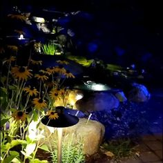 The artistry of pond lighting is incredibly important to any water feature. In the industry we often say that each feature has 2 experiences: a day and night life. To schedule a consultation with Northern Michigan's Pond Experts at Waterpaw visit our website or call. Natural swimming pools, koi ponds, swim ponds, fountains, streams, and waterfalls. Garden Paths, Garden Art, Garden Ideas, Ponds Backyard, Koi Ponds, Boyne City, Traverse City Michigan, Natural Swimming Pools, Pond Design