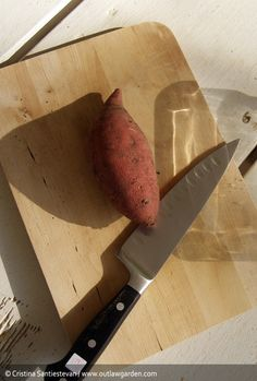 To grow your own sweet potato, first you need an old sweet potato