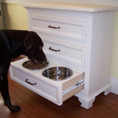 Hidden Dog Food Bowls, love to have these in the kitchen always knocking over dog bowls
