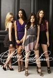 Pretty Little Liars follows four estranged best friends who are reunited one year after their best friend and queen bee of the group, Alison, goes mis...