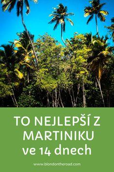 Martinik aneb Francie v srdci Karibiku Blond, Plants, Caribbean, Plant, Planets