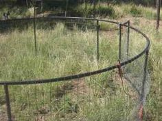 Trampoline turned mobile grazing pen for poultry or rabbits.