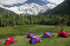 Book an Adventure Tour to Fairy Meadows Pakistan, the National Park located at the altitude of 3300 meters. Fairy Meadows Camping and Hiking Tours. Book Fairy Meadows accommodation and camping. World Most Beautiful Place, What A Wonderful World, Beautiful Places, Hiking Tours, Camping And Hiking, Cool Places To Visit, Places To Travel, Nanga Parbat, Pakistan Travel