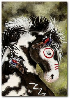 Majestic Mustang Indian War Paint Pinto Horse  -  5x7 Print by AmyLyn Bihrle. $15.00, via Etsy.