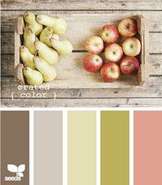 Soft harvest color palette