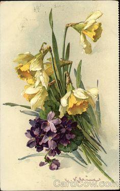 'Violets & Daffodils' by artist Catherine Klein <> (spring, springtime, flowers) Catherine Klein, Flower Images, Flower Pictures, Flower Art, Illustration Botanique, Botanical Illustration, Victorian Flowers, Vintage Flowers, Vintage Floral