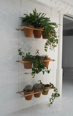 Hanging terracotta pots hanging window boxes, hanging planters, hanging she Hanging Window Boxes, Hanging Planters, Hanging Shelves, Diy Hanging, Hanging Herbs, Hanging Gardens, Ceiling Shelves, Hanging Basket, Indoor Window Boxes