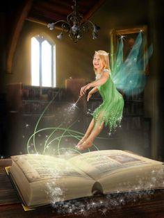 Fairy magic b
