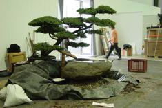 Wasser im Garten, Tsukubai : Asiatischer Garten von japan-garten-kultur