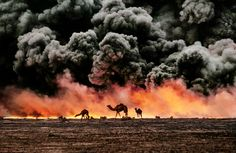 Kuwait | Steve McCurry