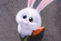Snowball (The Secret Life of Pets) Cute Bunny Cartoon, Cute Cartoon Pictures, Cartoon Profile Pics, Funny Phone Wallpaper, Cute Disney Wallpaper, Snowball Rabbit, Hd Cute Wallpapers, Cartoon Mignon, Rabbit Wallpaper