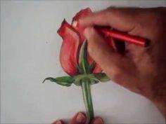 Como Pintar : Botão de Rosa ( Passo a Passo ) - YouTube