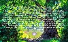 #hongo #naturaleza #mackenna #conciencia #quotes #frases #energia #chakras #despertar #alma #espiritu #amor #transformacion Argentina: argentina@econcie... Chile: info@econcientes.com www.econcientes.com www.facebook.com/ecoespiritual