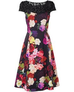 Dora Fit And Flare Dress