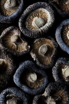 whitney ott, whitney ott photography, photography, food, food photography, shiitakes, shiitake mushrooms, mushrooms, still life, dark