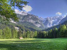 Mountains, Garden, Nature, Travel, Aldo, Youtube, Dancing, Musica, Garten