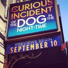 The Curious Incident of the Dog in the Night-Time at the Ethel Barrymore Theatre on Broadway