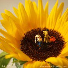 """""""Sunflower"""" http://miniature-calendar.com/130709/"""